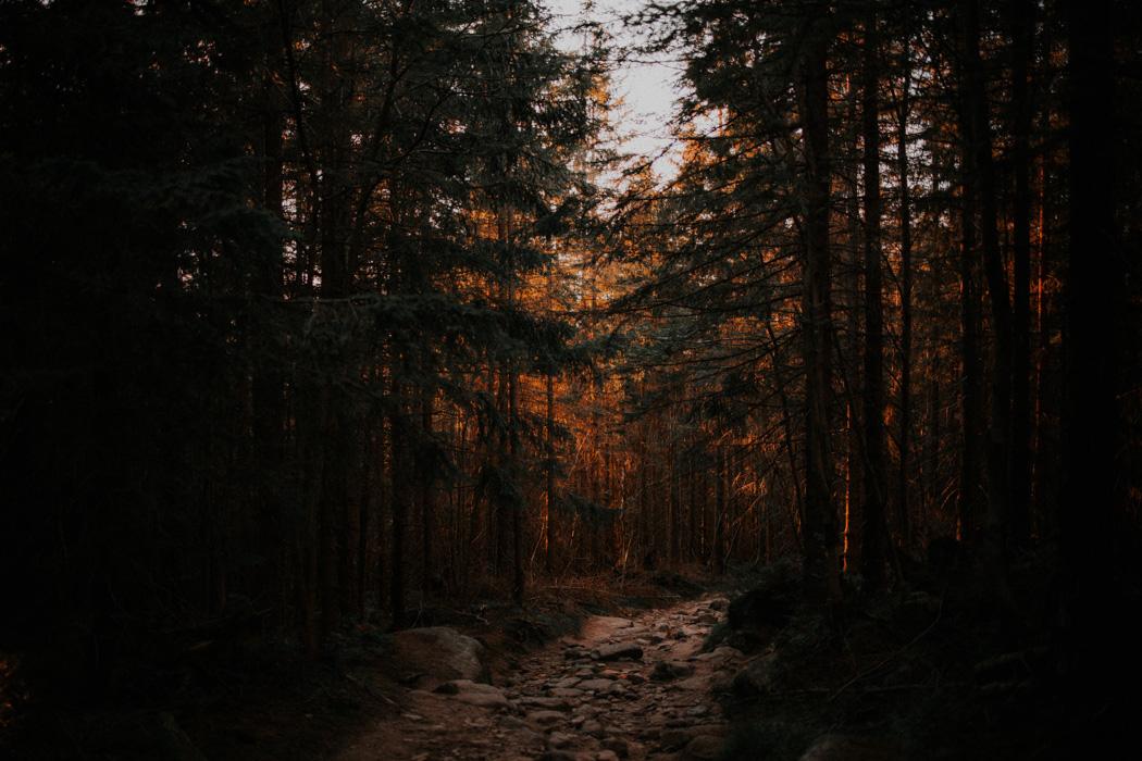 fotograf – Jelenia Góra – Karpaczi -Śnieżne Kotły-87